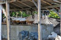 garam tradisional yeh malet
