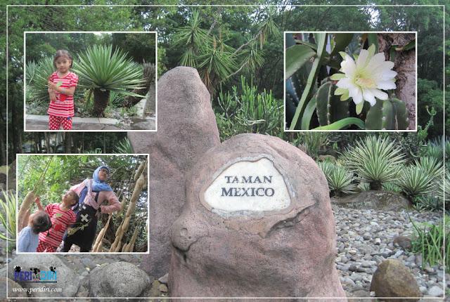 Taman mexico - kebun raya purwodadi