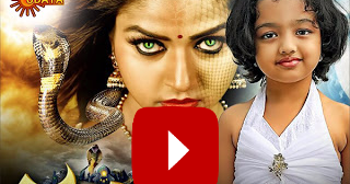 Live Kannada Tv Channels Watch Nandini Serial Latest
