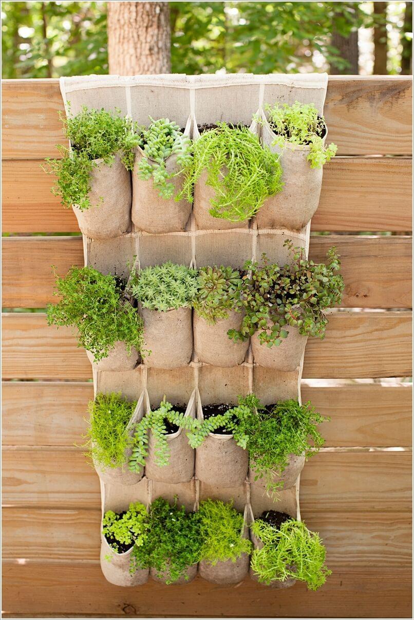 Túi đựng giày cũ – trồng cây trang trí hàng rào đẹp