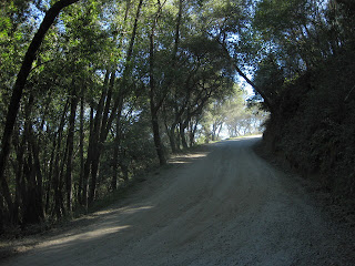 Dirt road beyond the pavement on Mt. Madonna Road near Gilroy, California