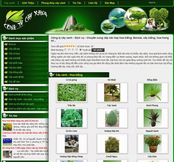 thiết kế website cây cảnh chuyên nghiệp