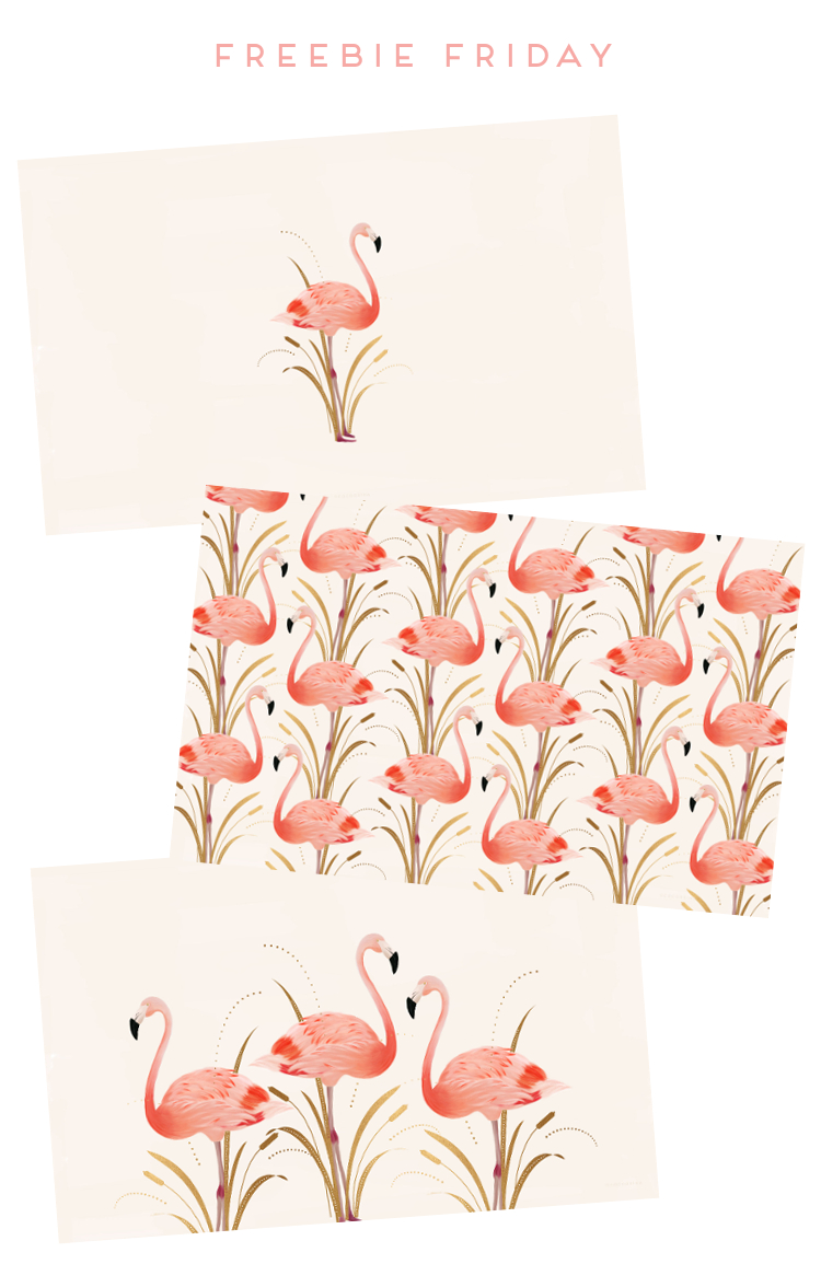 Freebie Friday - Pink Flamingo Desktop Wallpapers