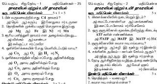 12th botany book in tamil medium download