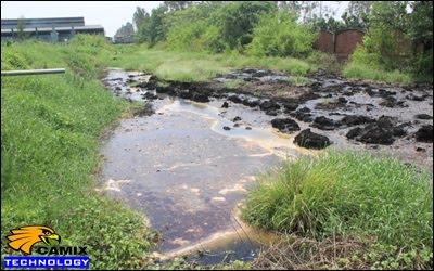 Công ty xây dựng hệ thống xử lý nước thải nhà máy chế biến thủy sản -  Ô nhiễm từ mùi hôi nước thải