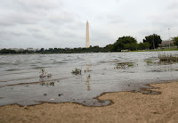 Nuisance high tides are even hitting Washington, D.C. (Photograph Credit: Mark Wilson | Getty) Click to Enlarge.