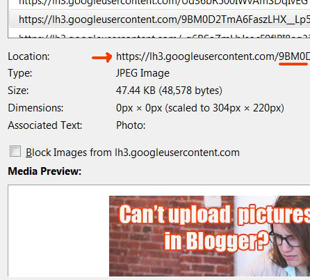 how to delet correct Blogger phot from Picasa album