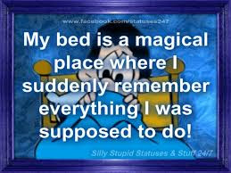 my bed is a magical  funny