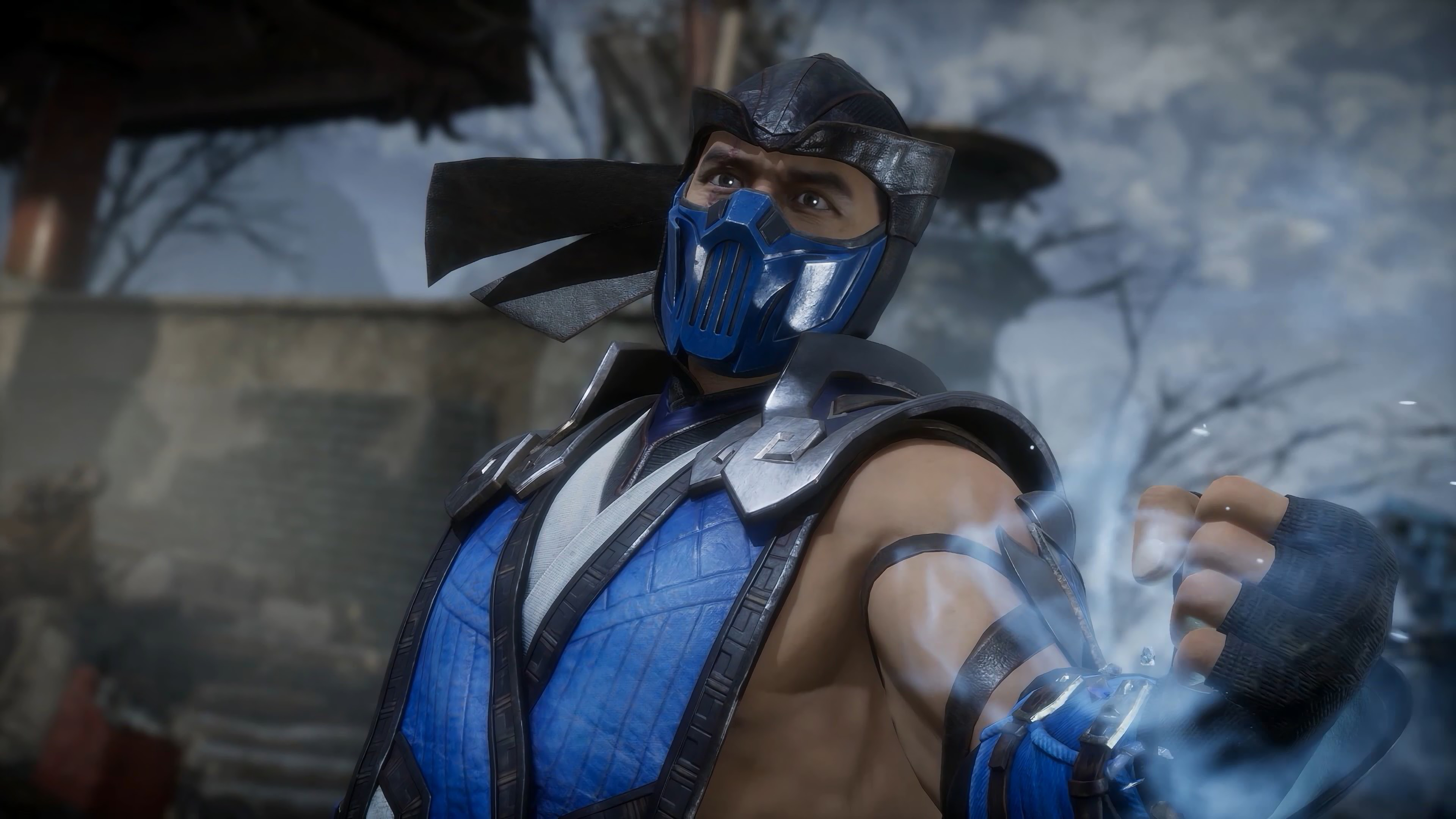 Sub Zero Mortal Kombat 11 4k 14 Wallpaper