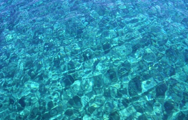 Το οξυγόνο των ωκεανών του πλανήτη μας λιγοστεύει κάθε χρόνο όλο και  περισσότερο. Είναι χαρακτηριστικό πως μέσα στα τελευταία 50 χρόνια η  ποσότητα του νερού ... 381a3af4f1a