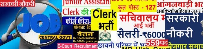 नौकरी, सरकारी पेपर, सिलेबस, पेपर के रिजल्ट, रोल नंबर