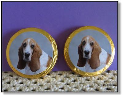Schokoladentaler mit Hundefoto