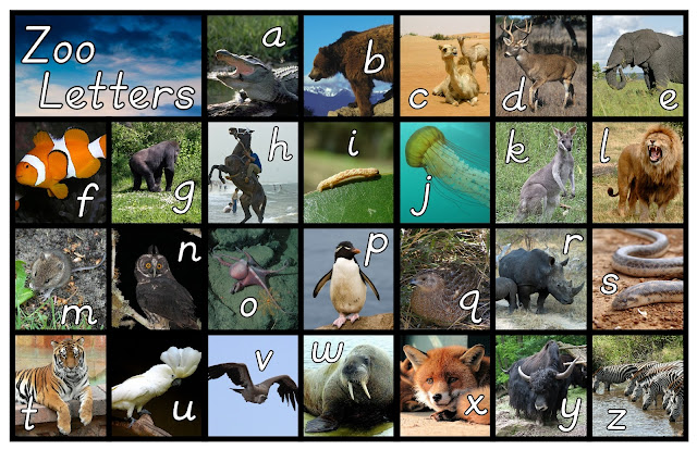 FREE Alpha-Zoo Poster with Real Animals from In Our Pond