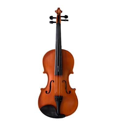 Địa điểm bán Đàn violin Vines 4/4 V35 Chính Hãng, Giá Tốt, Tphcm