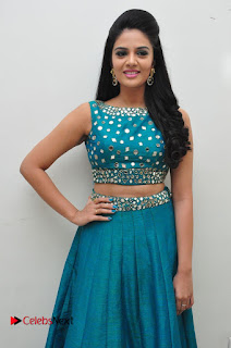 Sree Mukhi Pictures at Gentleman Audio Launch  0039
