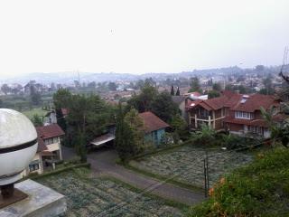 Villa Sejuk Nyaman Bersih Murah Di Lembang