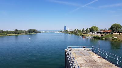 Danubio di Vienna