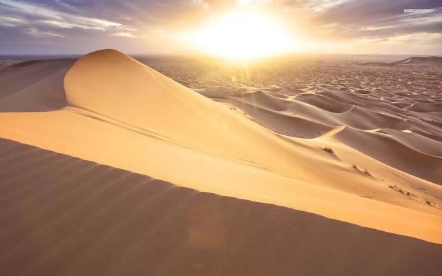 Sand-Dunes-Jaisalmer