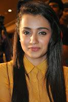 HeyAndhra Trisha Glamorous Photos at Cheekati Rajyam Event HeyAndhra.com