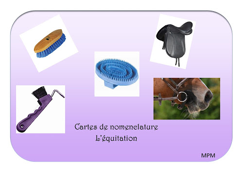 Cartes de nomenclature sur l'équitation