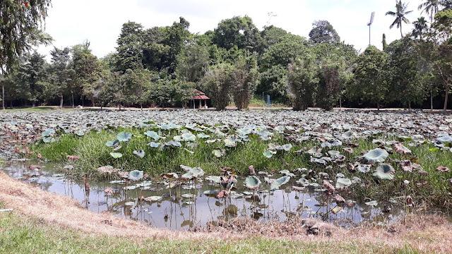 Taman Awam Kubang Gajah
