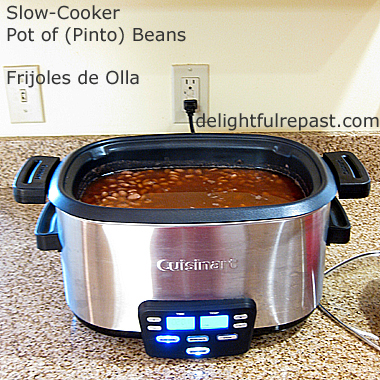 Slow-Cooker Pot of Pinto Beans - and Refried Beans / www.delightfulrepast.com