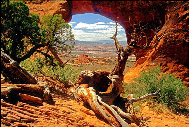 Arches National Park - Utah - EUA