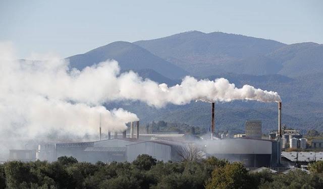 Στοιχεία για τα πυρηνελαιουργεία της Μεσσηνίας ζητούν οι ελεγκτές περιβάλλοντος