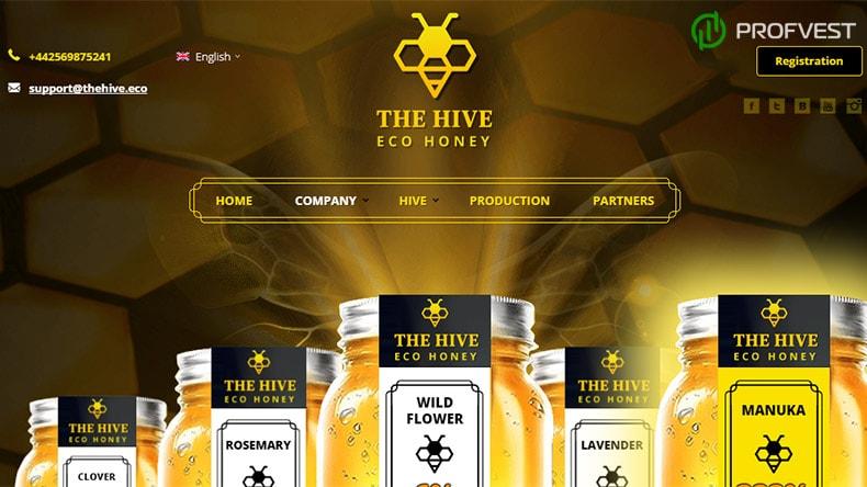 Eco Hive обзор и отзывы HYIP-проекта