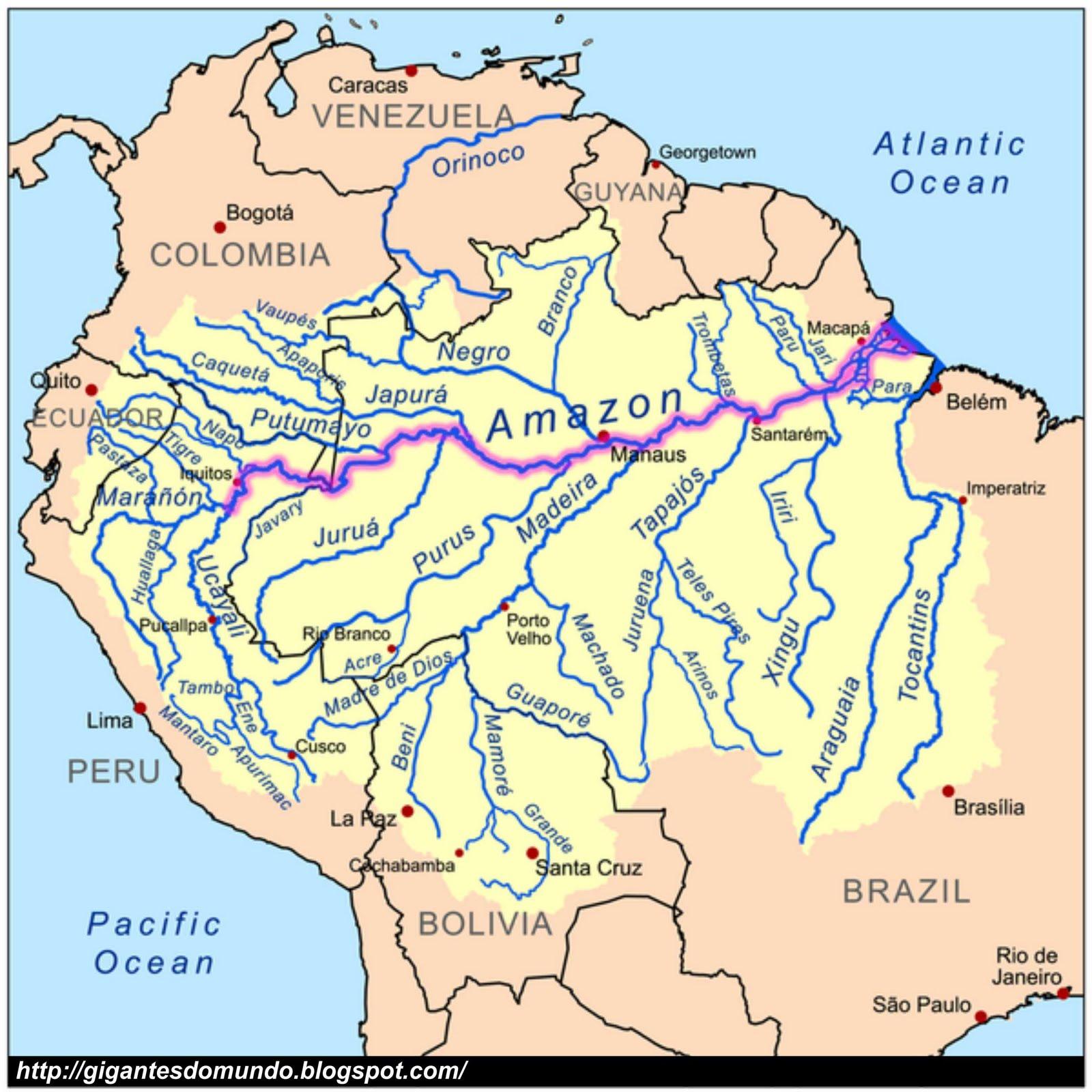 rios do mundo mapa Os 10 maiores rios do mundo | Gigantes do Mundo rios do mundo mapa