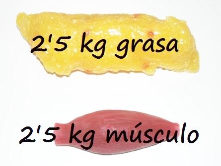adelgazar 3 kilos de grasa
