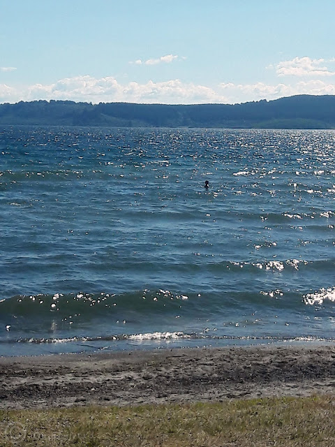 Beautiful blue lake taupo