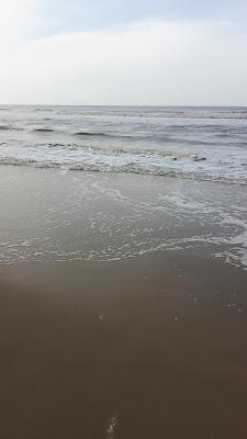 Ein Tag am Meer - Holland - Reisen mit Kindern