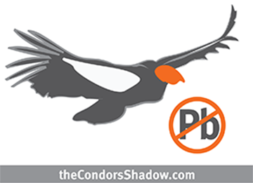theCondorsShadow.com