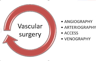 Basics coding Terms used for CPT code for Angiography
