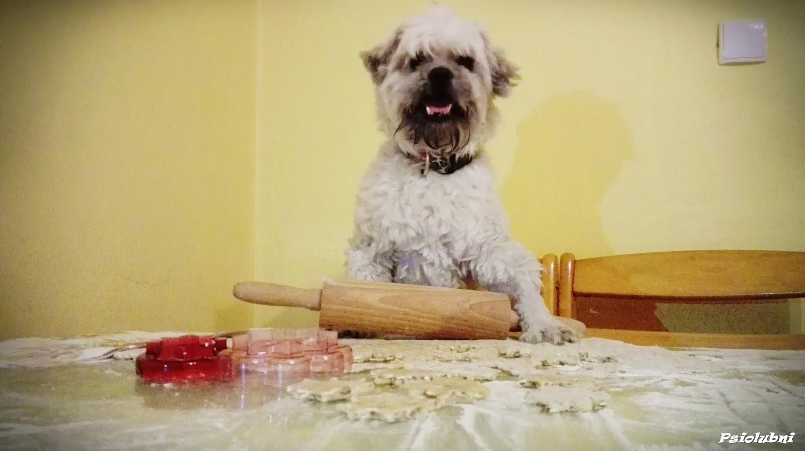 domowe, ciasteczka, przysmaki, diy, zrób to sam, przysmaki dla psa,