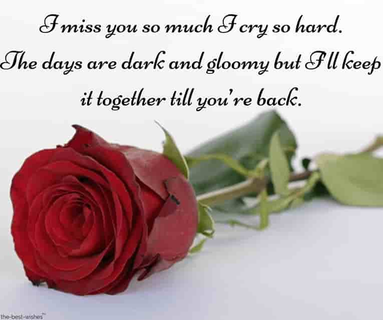 good morning text messages to him in a long distance with red rose