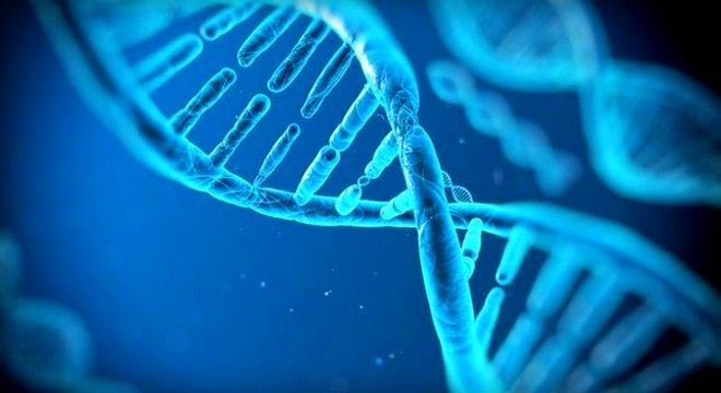 At Least 100 Biohackers Are Using CRISPR To Edit Their DNA (VIDEO)