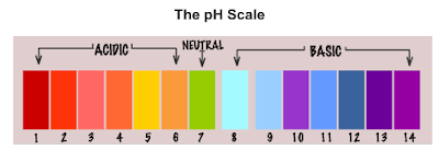 how to use ph paper to determine the ph of a substance