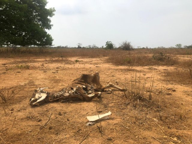 Desolada y en ruinas: La cruda FOTO que muestra cómo está Zulia por el mega apagón rojo