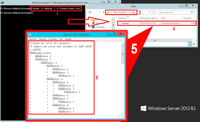 Microsoft Windows CMD: TREE listar Árbol de directorios. - tree c:\datos > c:\tree\tree.txt