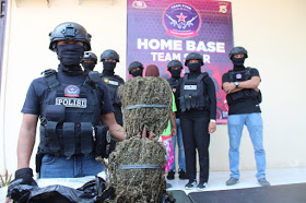 Miliki 2 Kg Ganja Kering, Seorang IRT di Tangkap Polisi