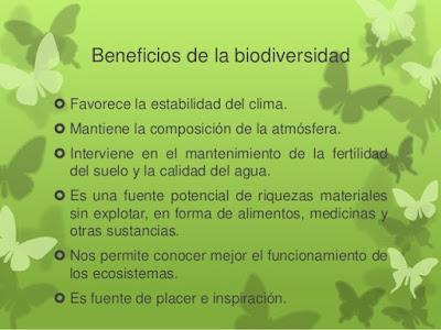 ¿Como se beneficia el ser humano de la Biodiversidad?