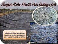Manfaat Mulsa Plastik Pada Budidaya Lele