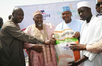 Dangote,    Dangote, Rice Farmers, Sokoto Government sign Rice Growers Scheme Agreement. Dangote laments huge forex on rice importation