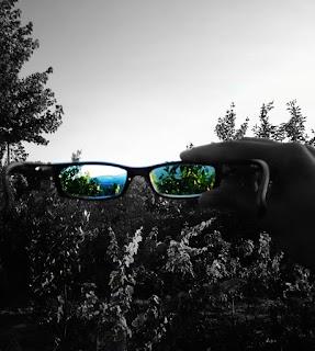 Hayatın Son Gözlüğü