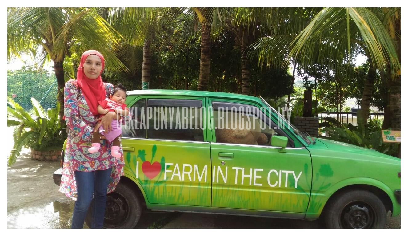 Jalan-jalan di Farm in the City.