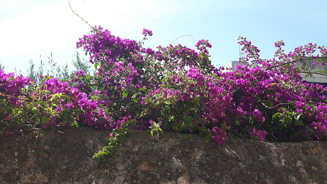 Mallorca Reisebericht - Familienreiseblog