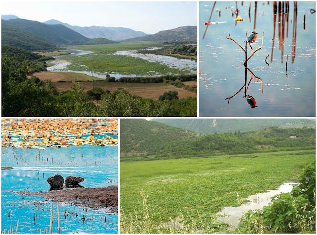 ΛΙΜΝΗ ΚΑΛΟΔΙΚΙΟΥ: Υγροβιότοπος μοναδικής οικολογικής αξίας στη Θεσπρωτία