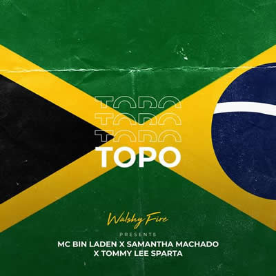 Walshy Fire (com MC Bin Laden e Tommy Lee) - Topo